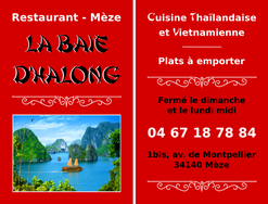 CV_baie_dhalong.png